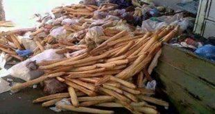 حملة وطنية تحسيسية لمحاربة ظاهرة تبذير الخبز